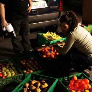 entraides-citoyennes-benevoles-tri-fruits