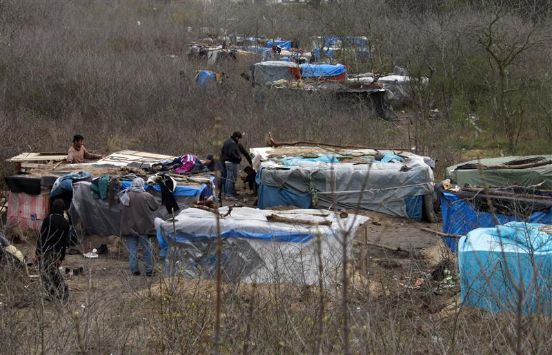 General view of makeshift shelters built by migrants in woods near the harbour of Calais